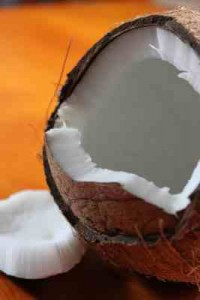 How Can Coconut Oil help you Lose Weight